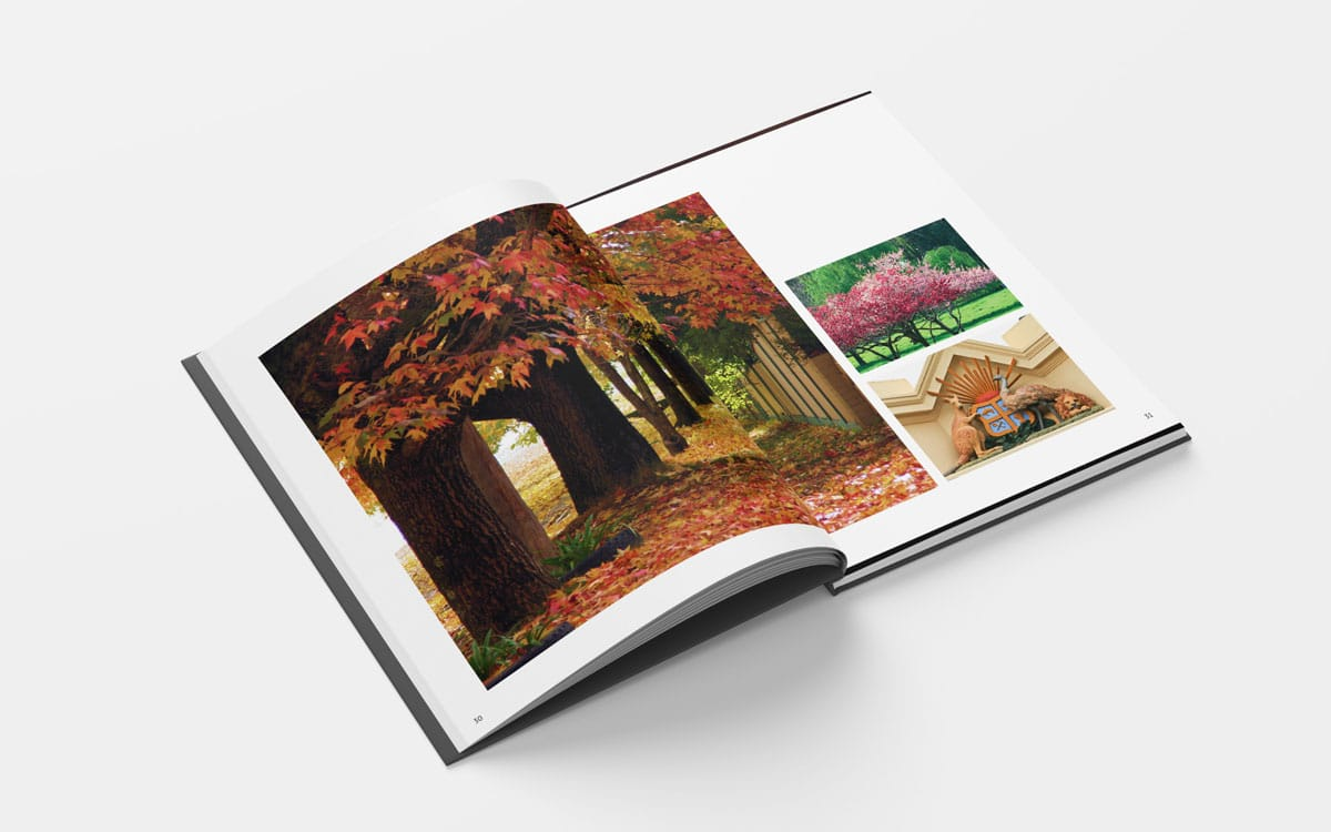 Open Beechworth book to tunnell of trees