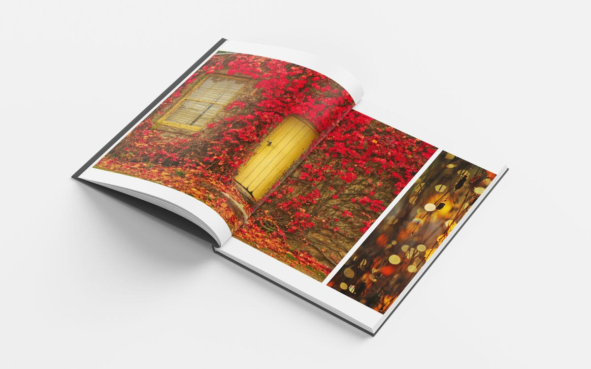 Open Beechworth book to old house with red flowers